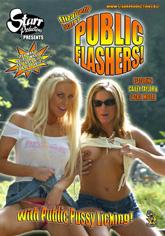 Public Flashers 01