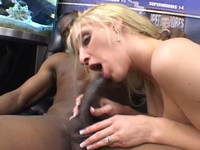 Busty Blond Bailey Sucks Big Black Cock