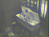 Security Cam Chronicles 01, Scene 7